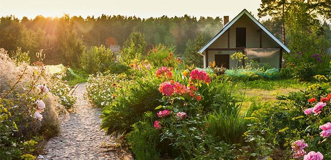 Calendrier de jardinage t for Horaire jardinage