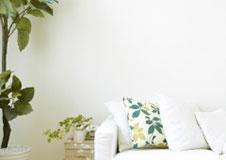 Witte verf voor binnenmuren en plafonds
