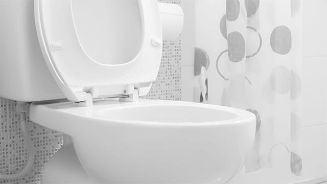 Kosten Nieuw Toilet : Nieuw wc kopen gamma be