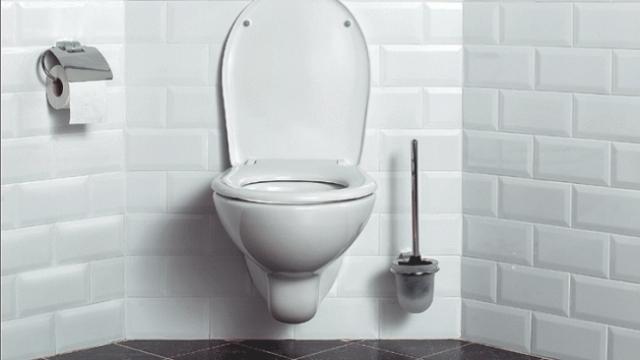 Zwevend Toilet Gamma : Hangtoilet inbouwen en afwerken gamma.be