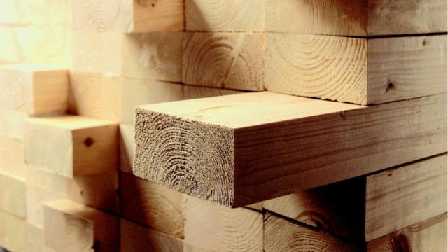 Geschikte houtsoort kiezen | GAMMA.be