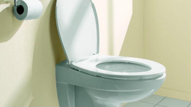 Zwevend Toilet Gamma : Toilet vervangen gamma be