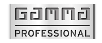 professional-logo.jpg