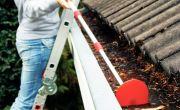 /doe-het-zelf/dakwerken/dakgoot-en-regenpijp-bladvrij-houden
