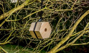 vogelhuisje zeshoek.jpg