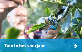 345x220_tuin-voorjaar_NL_V2.jpg